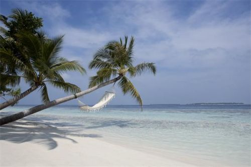 © copyright Vilamendhoo Island Resort